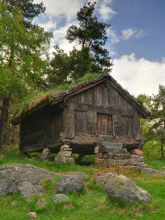 choza vikinga -taringa
